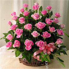 Basket with 45 pink roses.